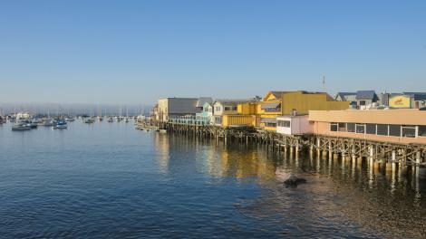 Monterey Bay Kalifornien Sch 246 Ne Natur Vielseitige