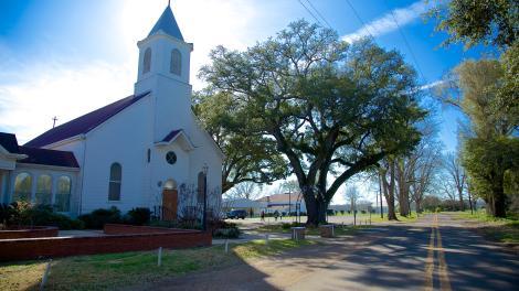 Cajun- und Zydeco-Musik im Süden von Louisiana | Visit The USA