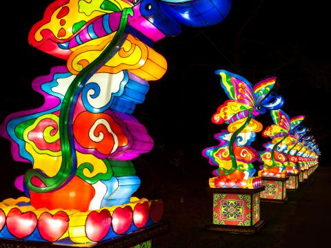 Farbenfrohe Laternen bestimmen das Bild auf dem Chinese Lantern Festival