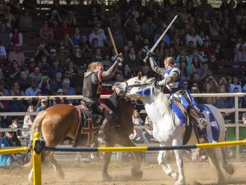Die berühmte, jährliche stattfindende Sonora Celtic Faire würdigt das keltische Erbe
