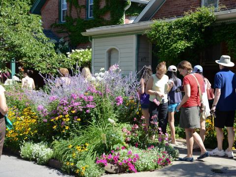 Gartenbesichtigung beim Garden Walk im Juli