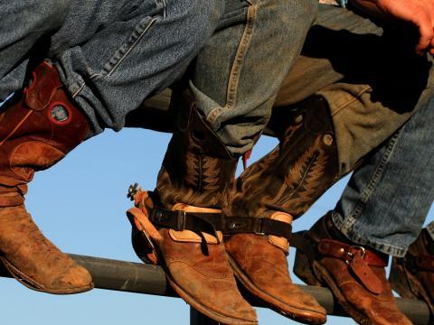 Cowboystiefel auf der Western Idaho Fair