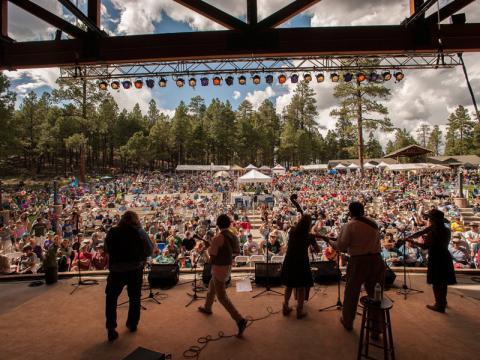 Musikgenuss im Pinienwald