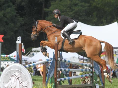 Ein beherzter Sprung bei den Richland Park Horse Trials