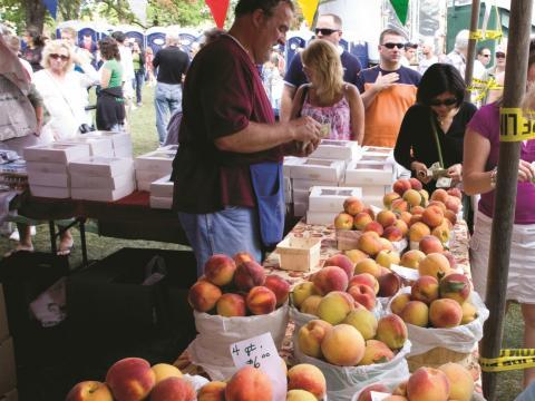 Bauernstand mit frischen Pfirsichen beim jährlichen Niagara County Peach Festival