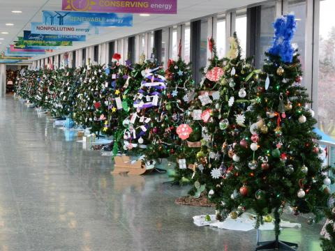 Decorated trees lined up during the Niagara Power Project Festival of Trees