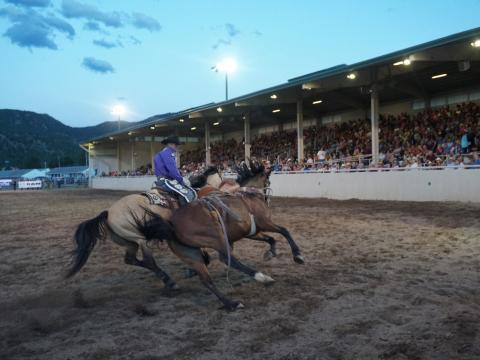 Turbulente Cowboy-Action beim einwöchigen Rooftop Rodeo in Estes Park