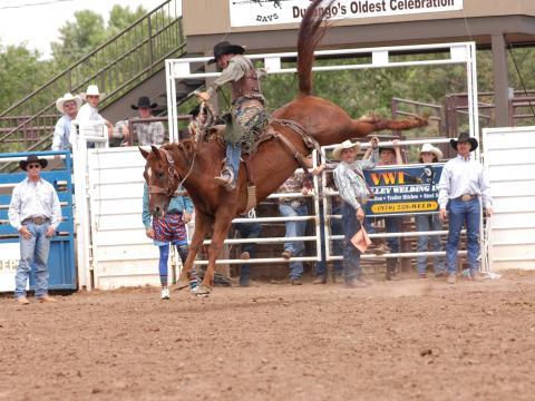 Spannende Rodeodarbietung bei den Durango Fiesta Days