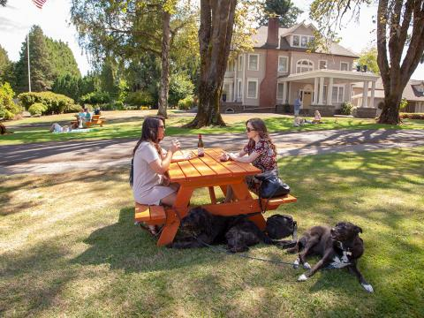 Kurze Pause während der hundefreundlichen Weinverkostungstour Canines Uncorked in Tualatin Valley, Oregon
