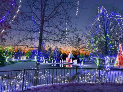 Wildlights– beeindruckende Weihnachtsbeleuchtung im Columbus Zoo und Aquarium in Ohio